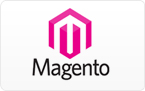 Magent SEO Services