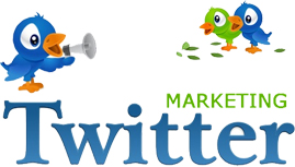 Twitter Promotion Services
