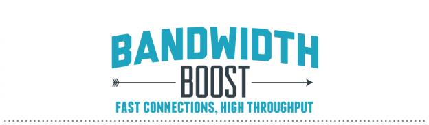 ips1-dedicated-server-boost-bandwidth-divider