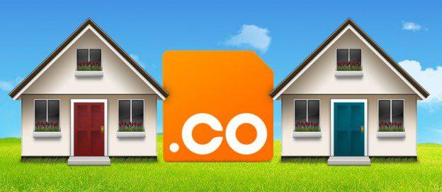 co-domain
