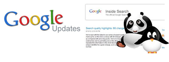 Google Jan 2013 Update