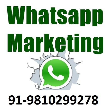 Whatsapp Marketing Call