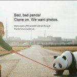 Panda Proof Content