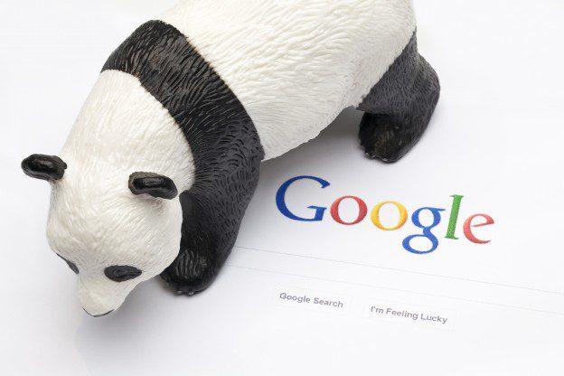 Next Panda Update Might Be Here