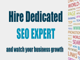 Hire Dedicated SEO Professionals